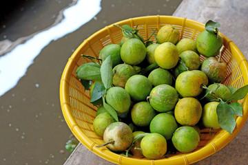 lemon fruit in the floating market