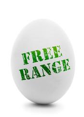 White egg with grunge label Free Range isolated