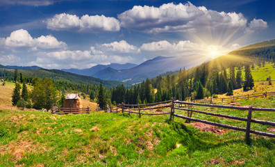 Wall Mural - Beautiful summer landscape in the mountains at summer