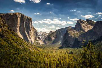 Wall Mural - Yosemite National Park, Half Dome from Tunnel View