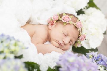 Newborn Baby schlafend auf dem Bauch