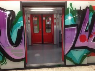 graffiti sul treno