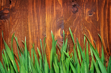 green grass and wooden boards