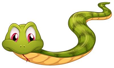 A green snake
