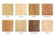 Holzarten Übersicht freigestellt