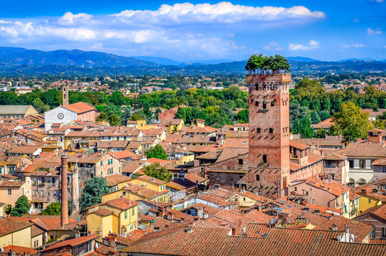Scenic view of Lucca and Guinigi tower