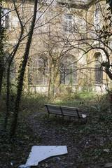 abandoned and overgrown garden