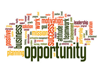 Opportunity word cloud