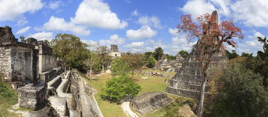 Mayan pyramid in Tikal, Guatemala
