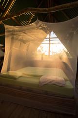 Open room in Costa Rica