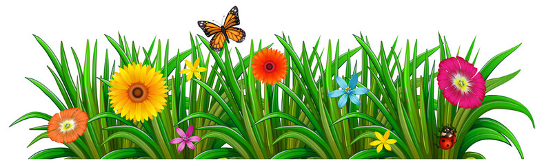 A garden with fresh blooming flowers, a butterfly and a ladybug