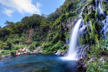 Autocollant pour porte Kaki Site du bassin des Aigrettes, La Réunion.