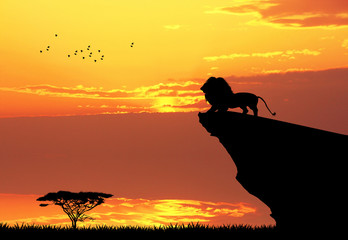 Lion on rope