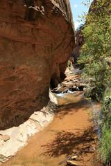 rivière du negro Bill Trail Head, Moab