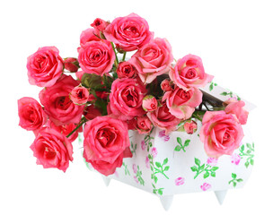 Beautiful small pink roses, isolated on white