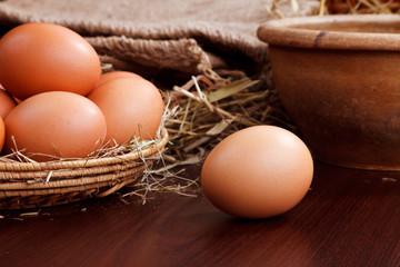 nature chicken eggs