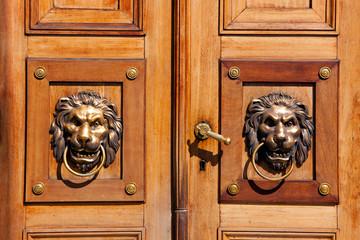 Luxury door knockers - lion heads