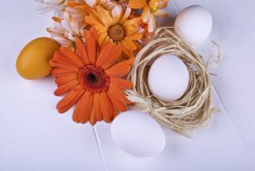 Raw eggs and daisy on a light background