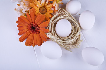 Raw eggs and daisy on light background