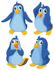 Four blue penguins