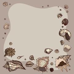 Summer Frame of seashells.