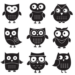 Owls, isolated design elements