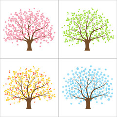 Tree in spring, summer, autumn and winter. Four seasons concept