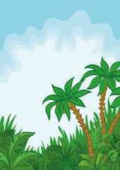 Exotic landscape, palm and plants