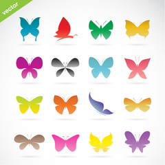 Vector group of colorful butterfly