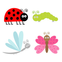 Cute cartoon insect set. Ladybug, dragonfly, butterfly and cater