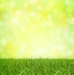 Bokeh Background Springtime