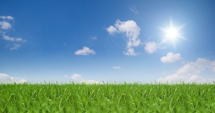 Landschaft / Himmel / Gras / Sonne