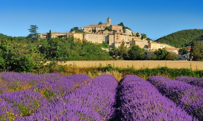 Photo Blinds Lavender la lavande en provence