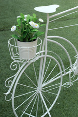 Vintage  of artificial flowers white and bicycle