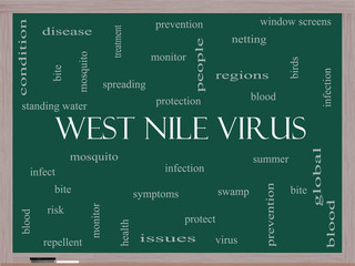 West Nile Virus Word Cloud Concept on a Blackboard