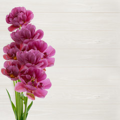 Beautiful bouquet of  tulips on white wooden background