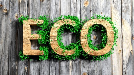 Wooden Eco word with vegetation growth on wooden background Wall mural
