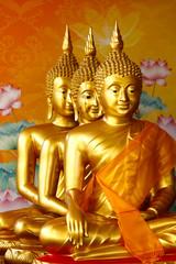 Row of sitting golden Buddha statutes.