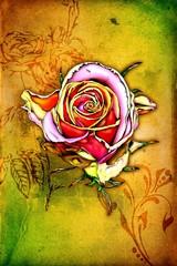 antique flower art drawing handmade rose