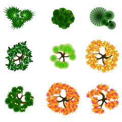 Trees item top view for landscape design / vector icon