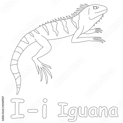 I For Iguana Coloring Page Stock Photo And Royalty Free