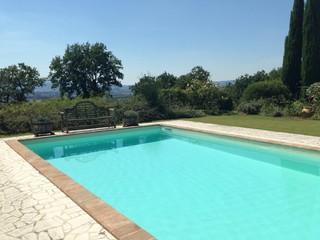 Swimming pool in a beautiful garden