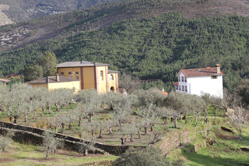 Wall Mural - Albergue y casa unifamiliar, Sauceda, Hurdes, España