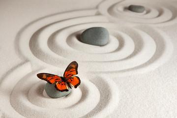 Zen skały z motylem