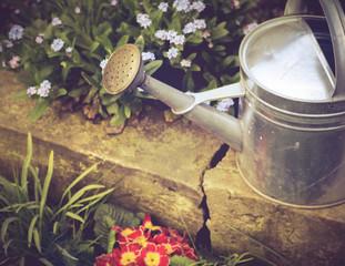 Gießkanne und Frühlingsblüher im Garten - Vintage Look