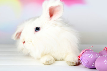 White cute rabbit and Easter eggs