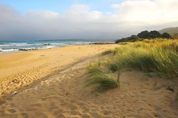 The Australian coast
