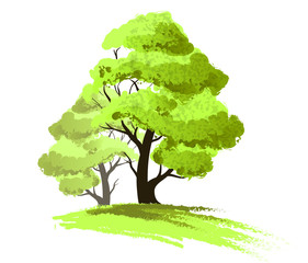 Two trees drawing isolated