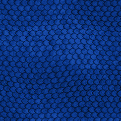 Blue Dragon scales pattern - vector