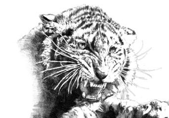 tiger power art illustration